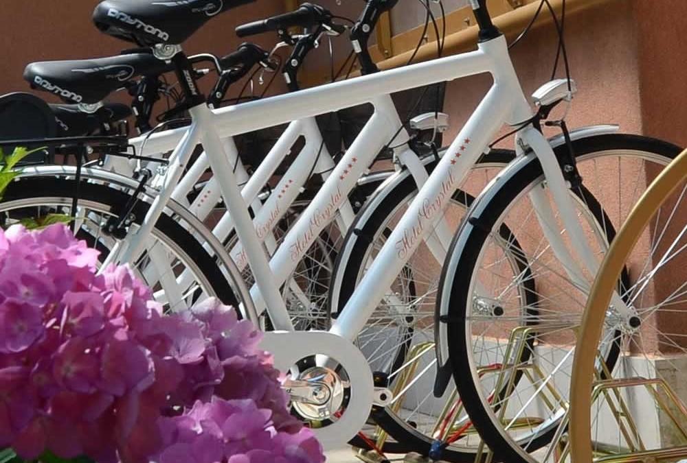 Nuovissime biciclette per escursioni rigeneranti