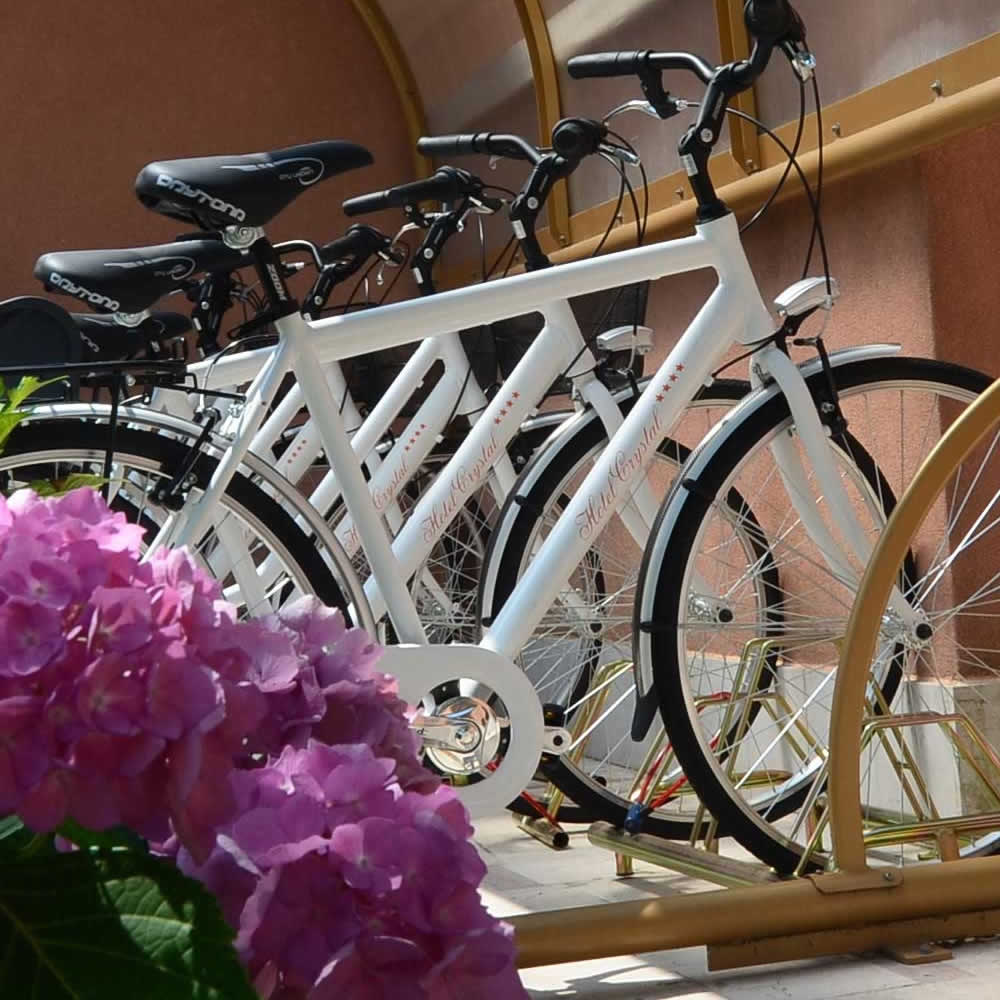 biciclette-crystal